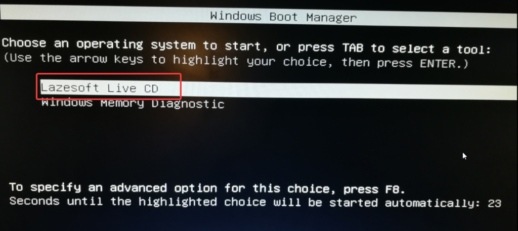 lazesoft burnUSB reset password